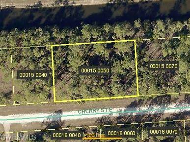 1243 Cherry St E, Lehigh Acres, FL 33974 (MLS #220010358) :: Clausen Properties, Inc.