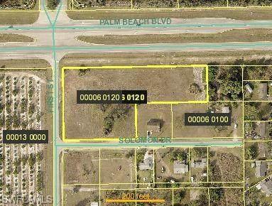 23070 Palm Beach Blvd, Alva, FL 33920 (MLS #220010535) :: Clausen Properties, Inc.