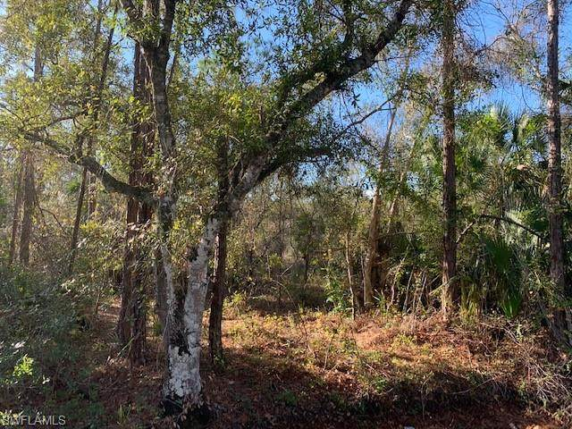 E Lincoln Ave, Labelle, FL 33935 (MLS #220010622) :: Clausen Properties, Inc.