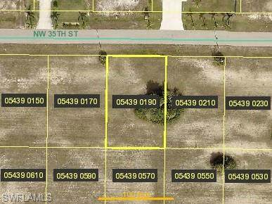 4238 NW 35th St, Cape Coral, FL 33993 (MLS #220011446) :: RE/MAX Realty Team