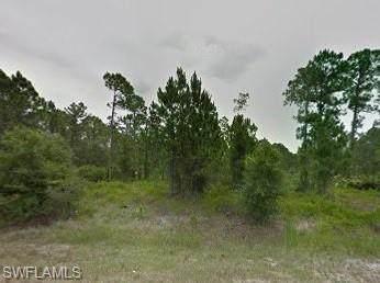 18395 Jefferson Ave, Port Charlotte, FL 33954 (MLS #220013347) :: The Keller Group