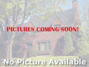 2895 46th St SW, Naples, FL 34116 (MLS #220013822) :: Clausen Properties, Inc.