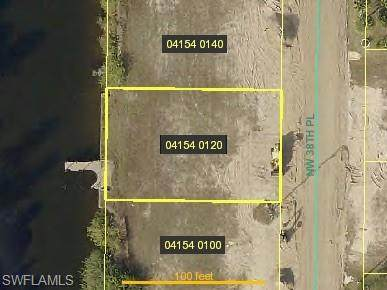 232 NW 38th Pl, Cape Coral, FL 33993 (MLS #220014917) :: Kris Asquith's Diamond Coastal Group