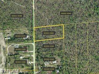 25531 Tropic Acres Dr, Bonita Springs, FL 34135 (MLS #220016004) :: Premier Home Experts