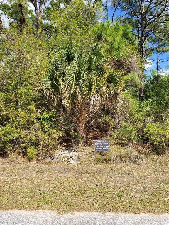 Bellefonte Ave, North Port, FL 34286 (MLS #220019151) :: RE/MAX Realty Team
