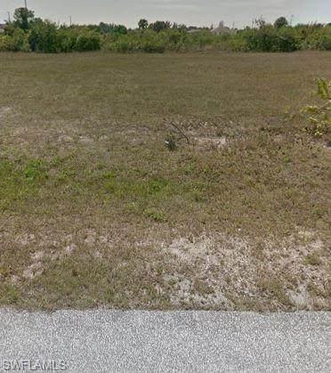 1126 NE 39th St, Cape Coral, FL 33909 (MLS #220019529) :: Team Swanbeck