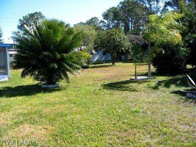 317 Shrub Ln S, North Fort Myers, FL 33917 (MLS #220020827) :: RE/MAX Realty Team
