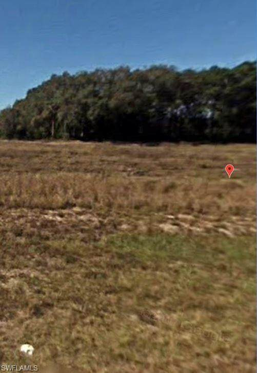 7010 Sister Ct, Labelle, FL 33935 (MLS #220022643) :: RE/MAX Realty Team