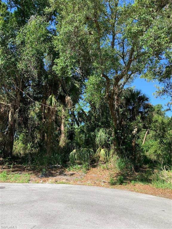 490 Christopher Court, Labelle, FL 33935 (MLS #220029580) :: Clausen Properties, Inc.