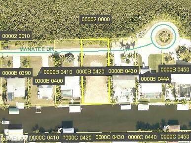 3247 Manatee Drive, St. James City, FL 33956 (MLS #220031224) :: RE/MAX Realty Team