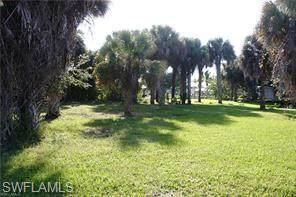 13427 Marquette Boulevard, Fort Myers, FL 33905 (MLS #220031315) :: #1 Real Estate Services