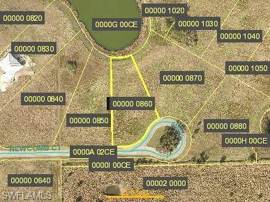 2034 Newcomb Court, Alva, FL 33920 (MLS #220033459) :: Clausen Properties, Inc.