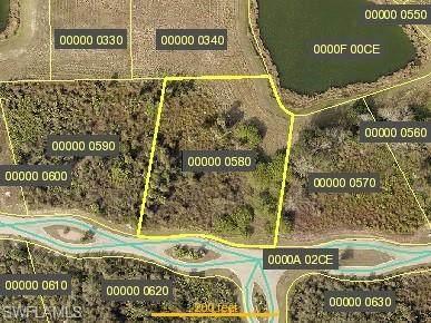 23066 Crookedwood Loop, Alva, FL 33920 (MLS #220033649) :: Clausen Properties, Inc.