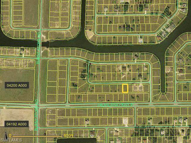 2916 NW 8th Terrace, Cape Coral, FL 33993 (#220035115) :: Caine Premier Properties