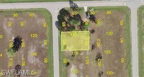 16039 Alcira Circle, Punta Gorda, FL 33955 (MLS #220038883) :: RE/MAX Realty Group