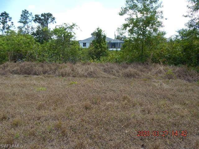 406 NE 31st Terrace, Cape Coral, FL 33909 (MLS #220041804) :: Dalton Wade Real Estate Group