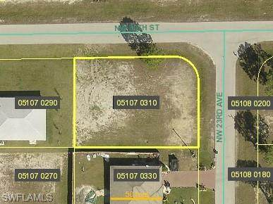 2916 NW 24th Avenue, Cape Coral, FL 33993 (MLS #220043774) :: RE/MAX Realty Team