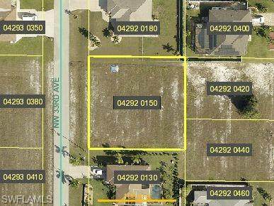 2009 NW 33rd Avenue, Cape Coral, FL 33993 (MLS #220044309) :: RE/MAX Realty Team