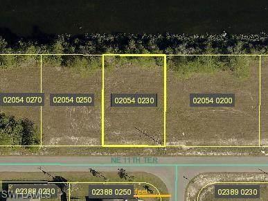 609 NE 11th Terrace, Cape Coral, FL 33909 (MLS #220049600) :: NextHome Advisors