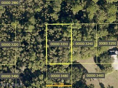Papaya Avenue, Bokeelia, FL 33922 (#220049617) :: Southwest Florida R.E. Group Inc