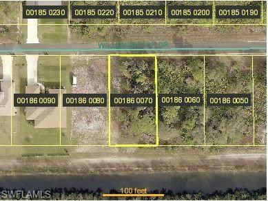 517 Willowbrook Drive, Lehigh Acres, FL 33972 (MLS #220049746) :: Team Swanbeck