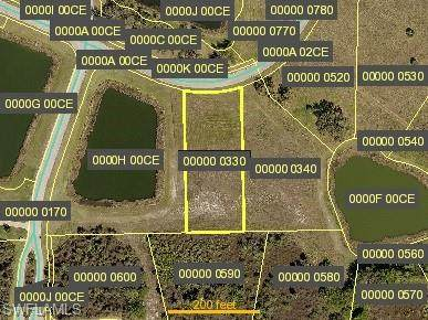 23000 Crookedwood Loop, Alva, FL 33920 (MLS #220049889) :: Premier Home Experts