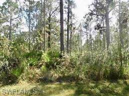 510 Orchid Drive, INDIAN LAKE ESTATES, FL 33855 (#220049980) :: Southwest Florida R.E. Group Inc