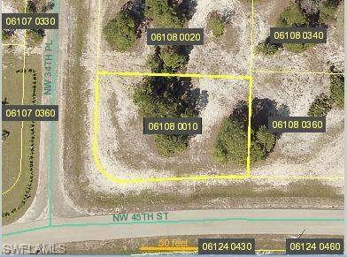 3405 NW 45th Avenue, Cape Coral, FL 33993 (MLS #220050139) :: Team Swanbeck