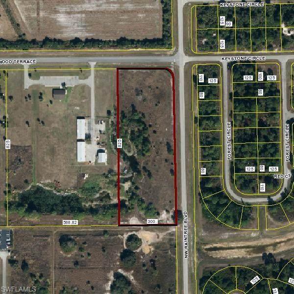 NW Raintree Boulevard, Labelle, FL 33935 (MLS #220053728) :: Clausen Properties, Inc.