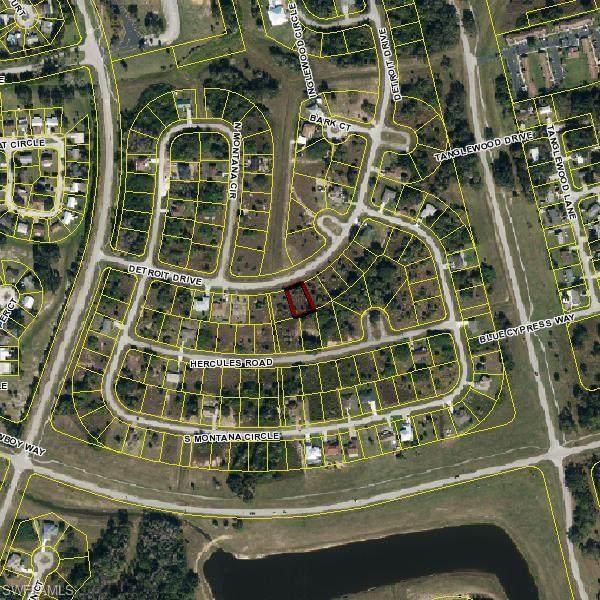 2073 Detroit Drive, Labelle, FL 33935 (#220055139) :: Caine Premier Properties