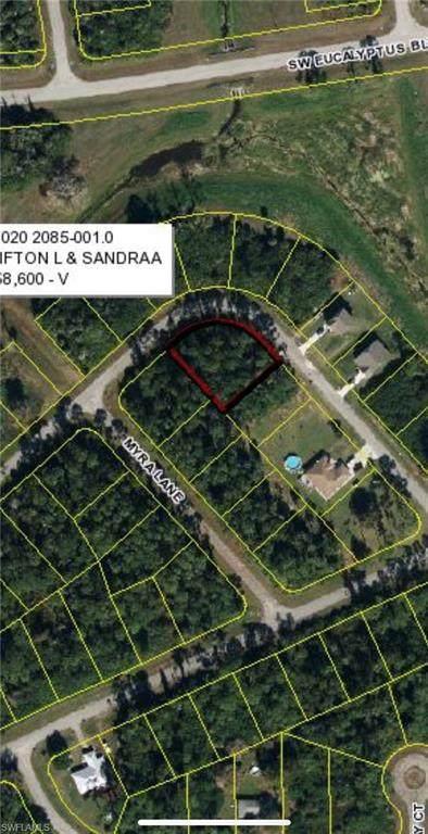 3018 N Balsam Circle, Labelle, FL 33935 (#220056177) :: Caine Premier Properties