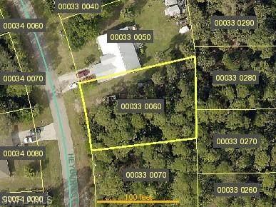 3814 Heyburn Street, Fort Myers, FL 33905 (#220056932) :: Caine Premier Properties