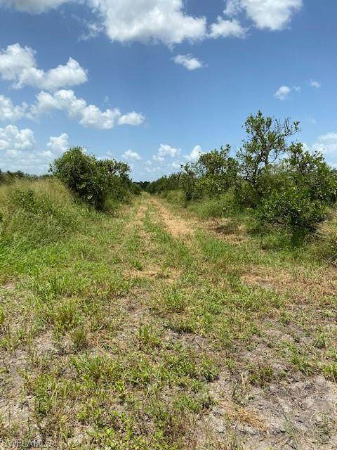 6th  (Sears Rd. in Records) Road, Labelle, FL 33935 (MLS #220057895) :: Clausen Properties, Inc.