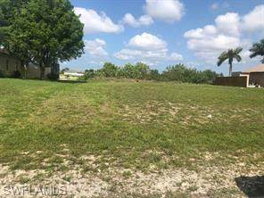 916 NW 3rd Avenue, Cape Coral, FL 33993 (MLS #220059267) :: RE/MAX Realty Team