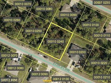 4628 27th Street SW, Lehigh Acres, FL 33973 (#220060035) :: Southwest Florida R.E. Group Inc