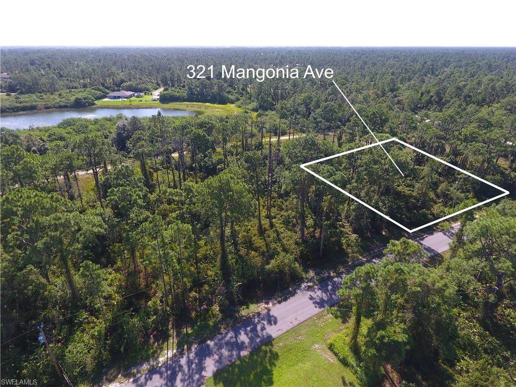 321 Mangonia Avenue - Photo 1