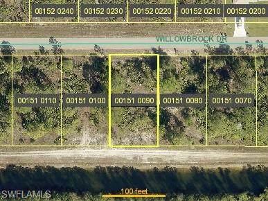 489 Willowbrook Drive, Lehigh Acres, FL 33972 (#220060749) :: Jason Schiering, PA