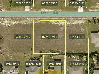424 NW 6th Terrace, Cape Coral, FL 33993 (MLS #220061031) :: #1 Real Estate Services