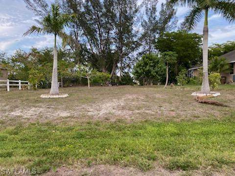 2201 SW 15th Place, Cape Coral, FL 33991 (MLS #220062727) :: RE/MAX Realty Team