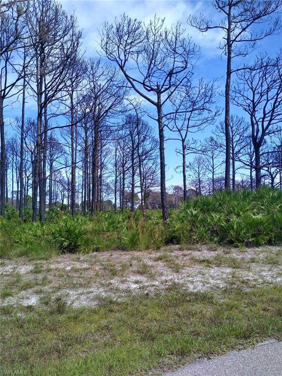 3 Bill Court, Placida, FL 33946 (MLS #220066689) :: Realty World J. Pavich Real Estate
