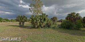 24467 Gijon Lane, Punta Gorda, FL 33955 (#220067026) :: We Talk SWFL