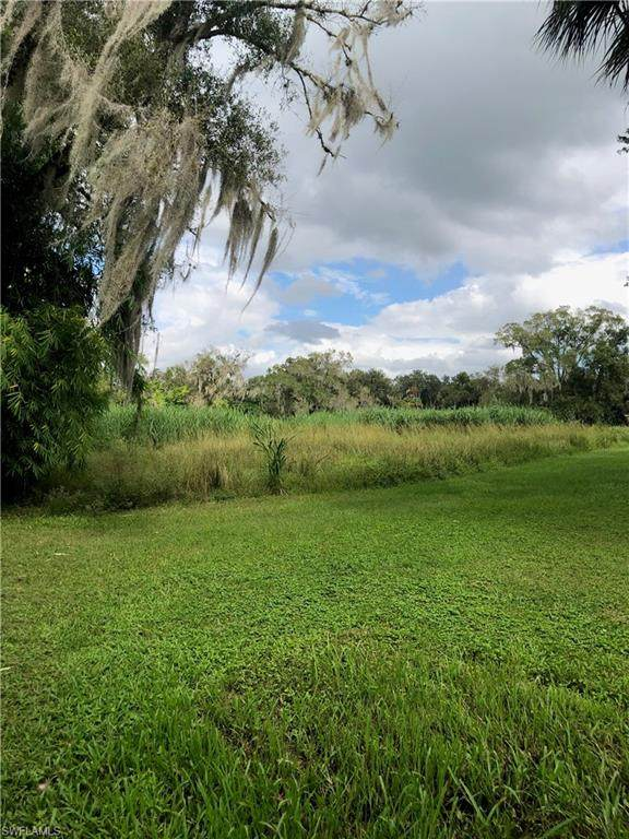 Live Oak Lane, Labelle, FL 33935 (MLS #220068166) :: The Naples Beach And Homes Team/MVP Realty