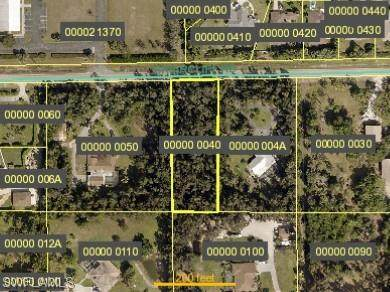 6250 Briarcliff Road, Fort Myers, FL 33912 (MLS #220068457) :: Realty Group Of Southwest Florida