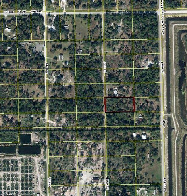 415 N Zambria Street, MONTURA RANCHES, FL 33440 (MLS #220068767) :: Realty Group Of Southwest Florida
