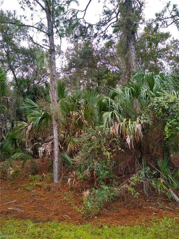14119 Hughes Avenue, Port Charlotte, FL 33953 (MLS #220072477) :: #1 Real Estate Services