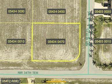3420 NW 45th Place, Cape Coral, FL 33993 (MLS #220075902) :: NextHome Advisors