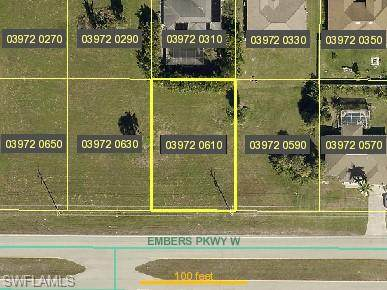 2515 Embers Parkway W, Cape Coral, FL 33993 (MLS #220076540) :: RE/MAX Realty Team