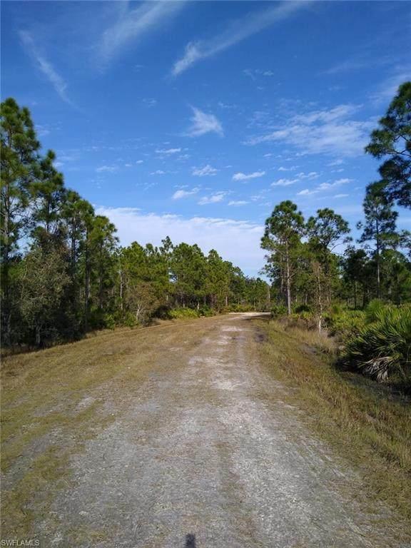 28108 Ramiro Drive, Punta Gorda, FL 33955 (MLS #221001039) :: Clausen Properties, Inc.