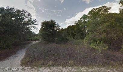 2003 Abbott Avenue, Alva, FL 33920 (MLS #221001682) :: Clausen Properties, Inc.