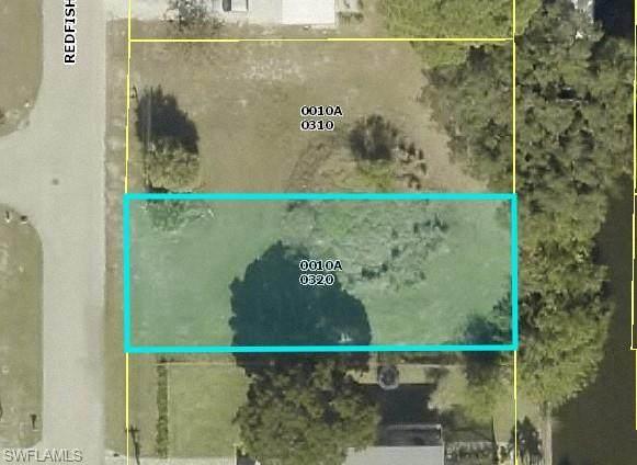 24526 Redfish Street, Bonita Springs, FL 34134 (MLS #221003993) :: Team Swanbeck